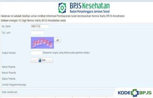Cara Cek Tagihan melalui Website Resmi BPJS