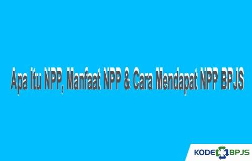Apa Itu NPP