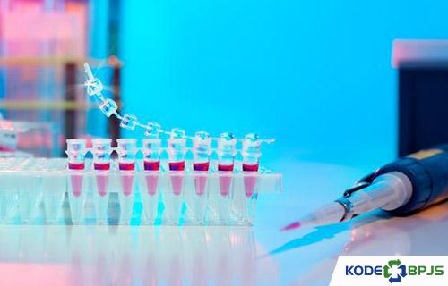 Manfaat Tes DNA