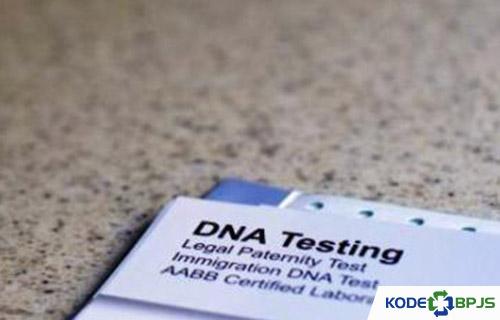 Pengertian Tes DNA