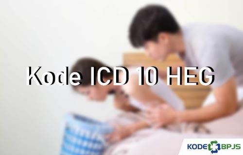 Kode ICD 10 HEG